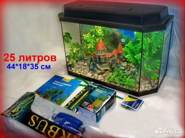 Предлагаем новые аквариумы