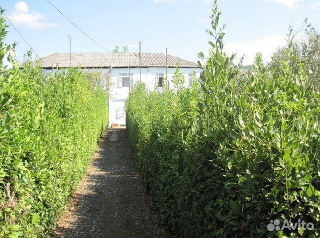 Продам дом в абхазии