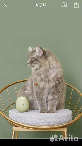 Игрушка для кошек  89148564268 купить 1