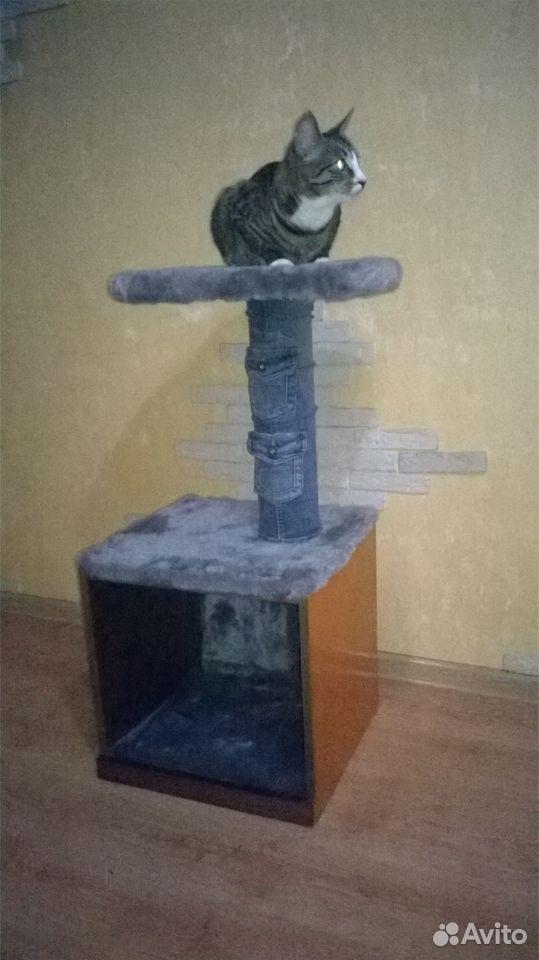 Домик для кота  89005668437 купить 6