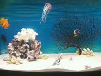 Грунт для аквариума - песок кварц