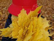 Шляпка для маленькой принцессы.Еа обх.головы от 53